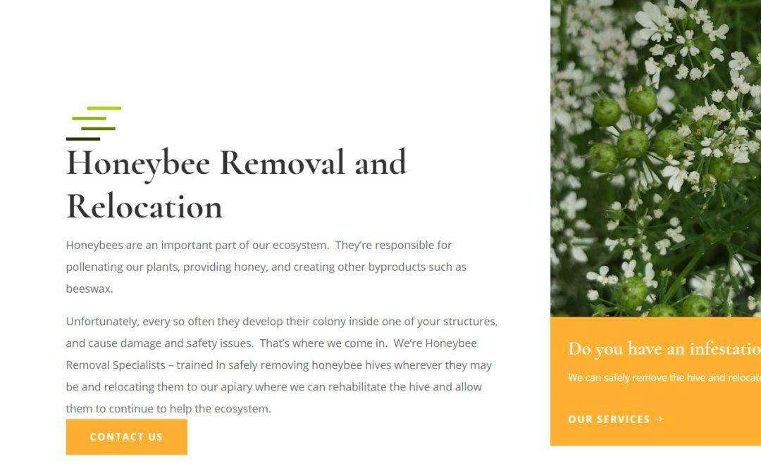 Nova Bee Removal